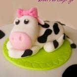 cow cake-5wtr