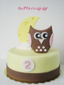 girly-owl-and-moon-cake