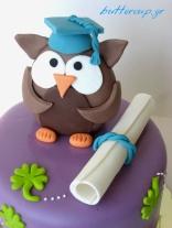 graduation owl cake 002wtr