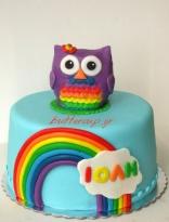 rainbow owl cake 1 wtr