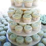 rocking horse cupcakes-7wtr