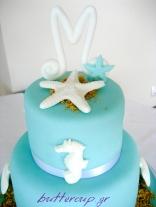tiffany blue cake-2wtr