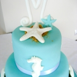 tiffany blue cake-2wtr