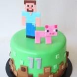 minecraft-steve-cake-web